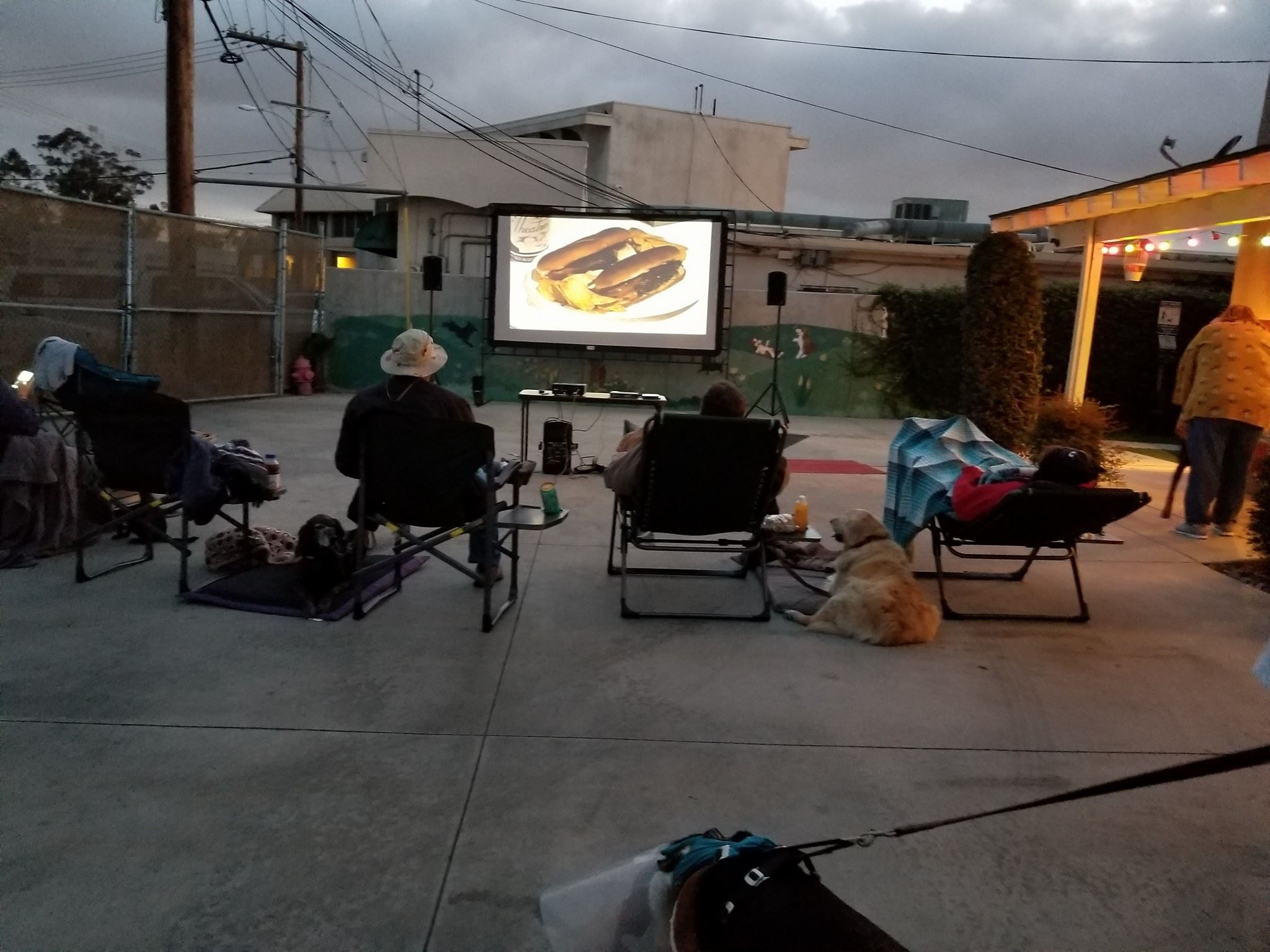 Cape-Able Canines Movie Night